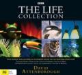 Attenborough Life Collection Box Set