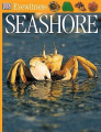 Seashore (Eyewitness)