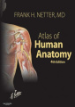 Atlas of Human Anatomy: WITH netteranatomy.com (Netter Basic Science)