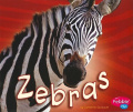 Zebras (African Animals)