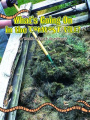 What's Going on in the Compost Pile: A Book about Systems