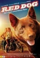 Red Dog : DVD