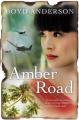Amber Road
