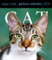 Cat Page-A-Day Gallery Calendar