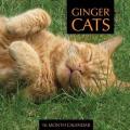 Ginger Cats Calendar 2015: 16 Month Calendar