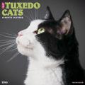 Tuxedo Cats Calendar